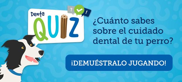 banner-dentalife-dentaquiz.jpg